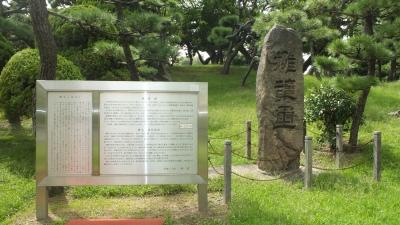 蘇鉄山04