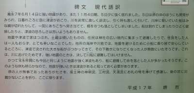 蘇鉄山05