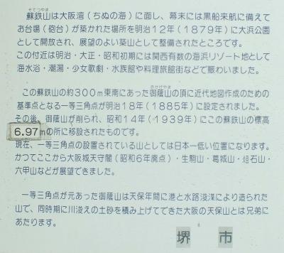 蘇鉄山07