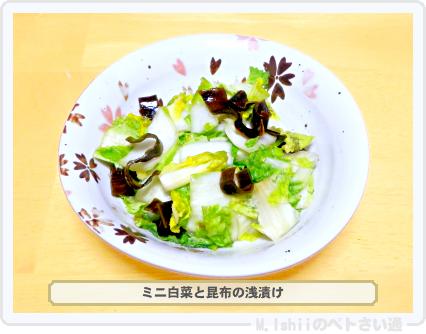 ミニ白菜料理06