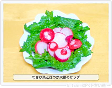 わさび菜料理03