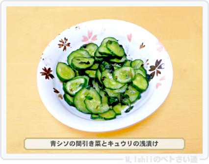 シソ料理01