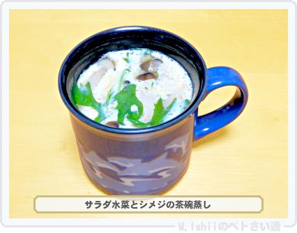 サラダ水菜料理02