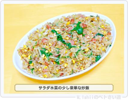 サラダ水菜料理05