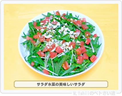 サラダ水菜料理06