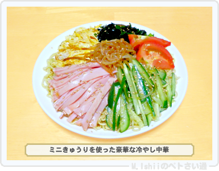 ミニきゅうり料理03