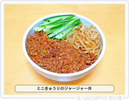ミニきゅうり料理07