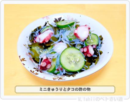 ミニきゅうり料理09