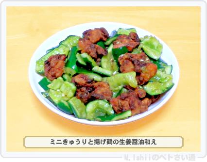 ミニきゅうり料理10