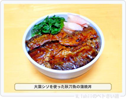 大葉シソ料理05