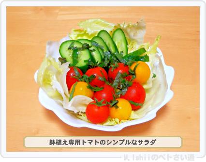 レジナ料理01