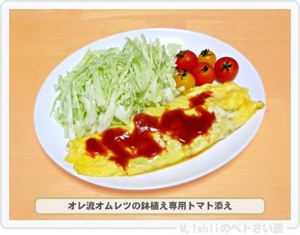 レジナ料理02