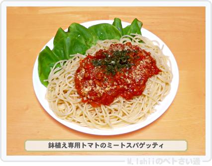 レジナ料理03
