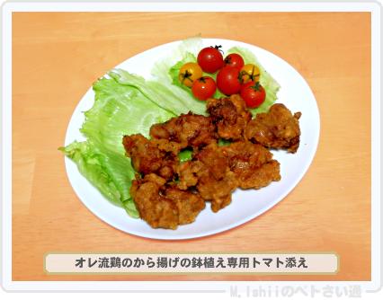 レジナ料理04