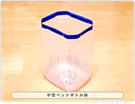 ペトさい(ペットボトル鉢)06