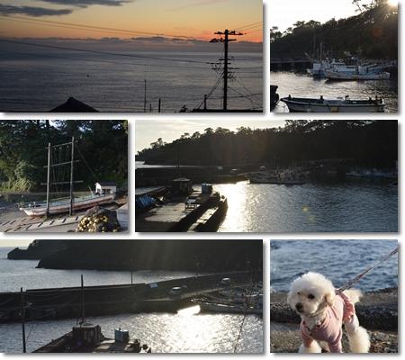 )朝の富戸海岸散歩(2016_12