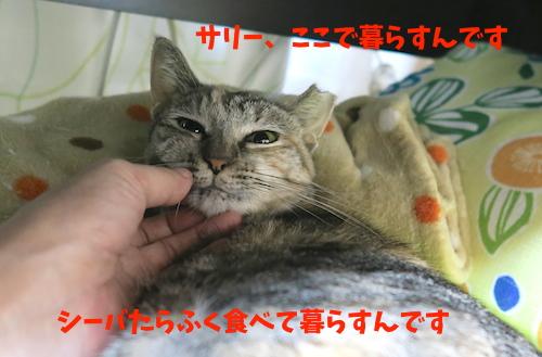 201610318.jpg