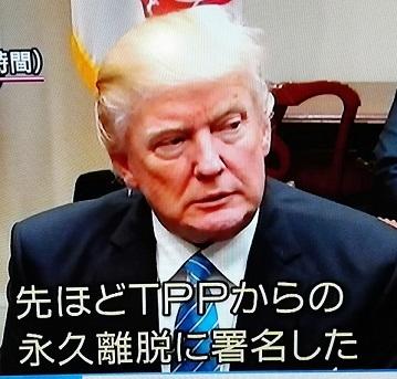 IMG_20170125_051740.jpg
