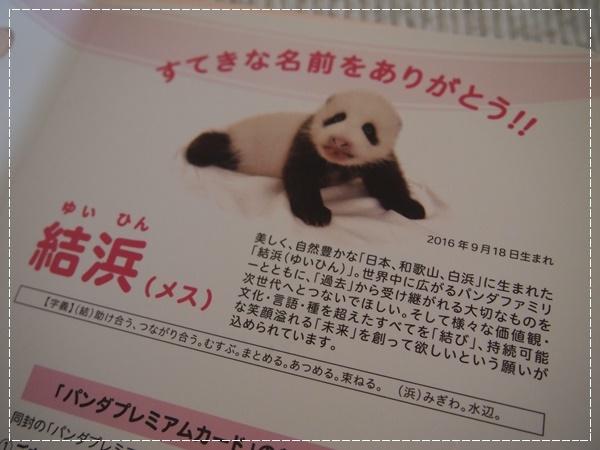 PC150979.jpg