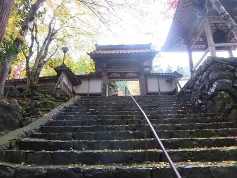 長安寺のモミジ 029-1a