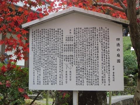 長安寺のモミジ 031-1g