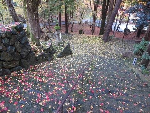 長安寺のモミジ 042-1c