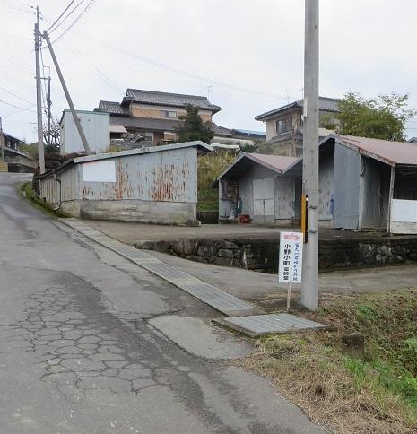 長安寺のモミジ 014-1n