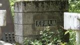 20160603稲子129