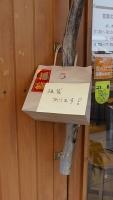 20170102浅草寺159