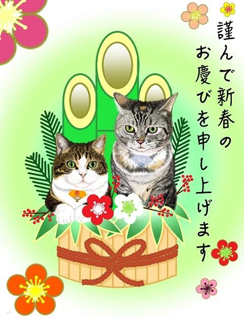 ココニコ年賀状(2)