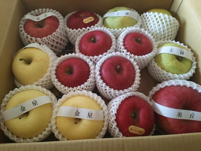 161219リンゴ (1)