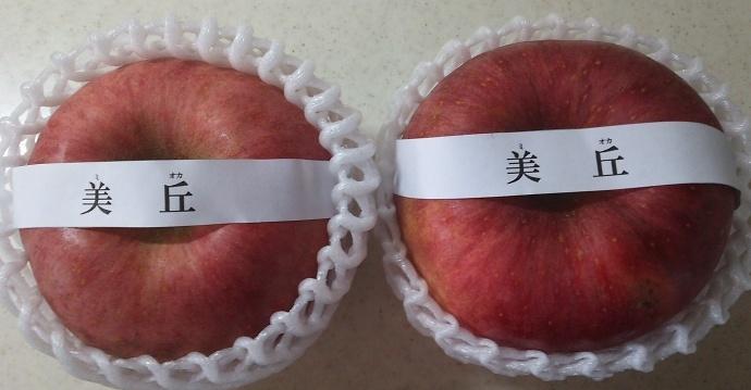 161219リンゴ (5)