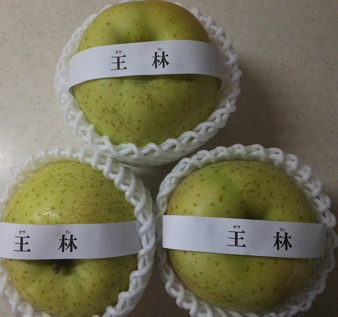 161219リンゴ (4)
