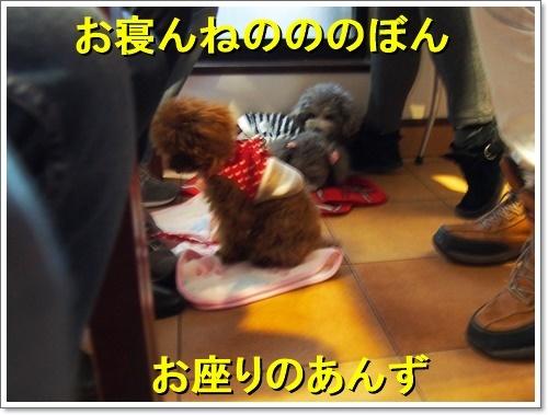 20120101_005_01.jpg