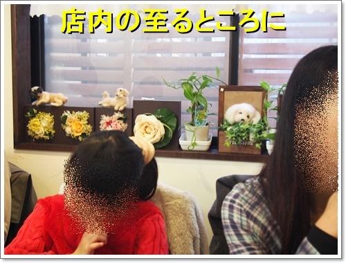20120101_007_01.jpg
