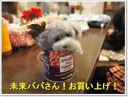 20120101_022_01.jpg