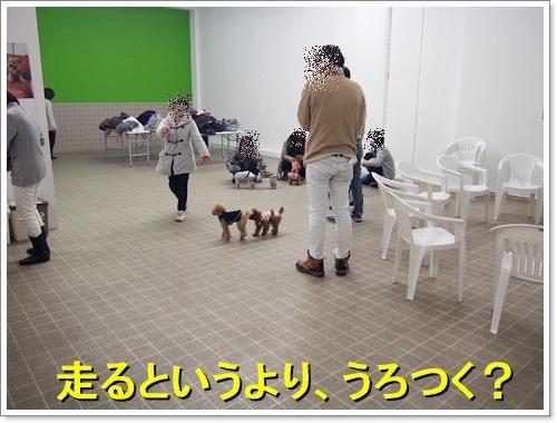 20120101_209.jpg