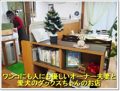 20161223_064.jpg