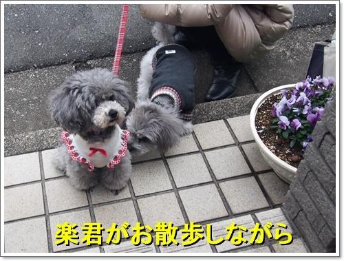 20161226_001.jpg