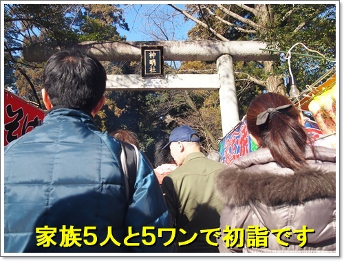 20170101_019.jpg