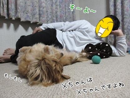 kinako6013.jpg