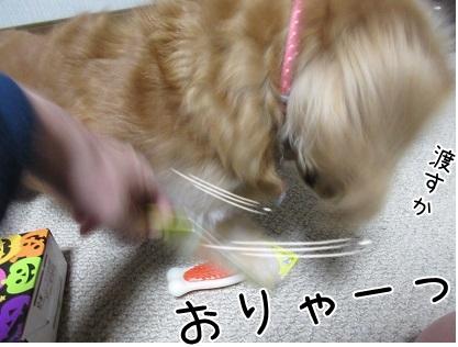 kinako6048.jpg