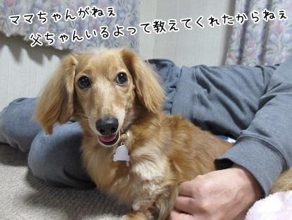 kinako6085.jpg