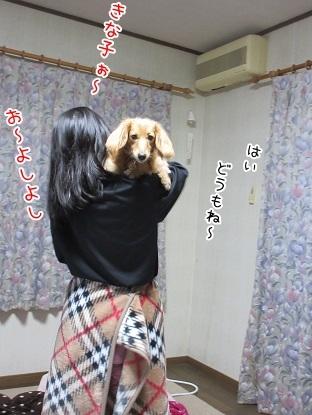 kinako6175.jpg