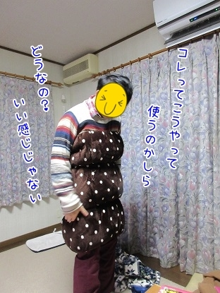 kinako6210.jpg