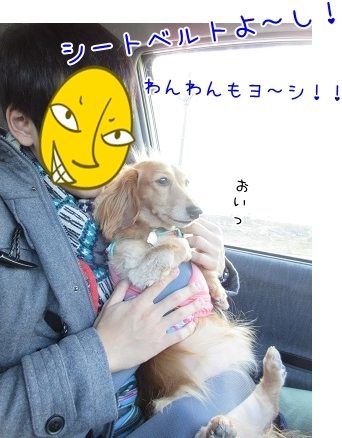 kinako6262.jpg