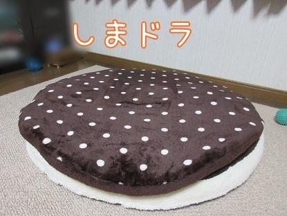 kinako6266.jpg