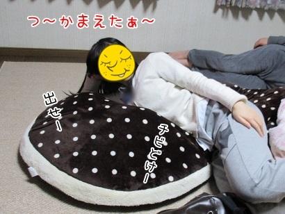 kinako6275.jpg