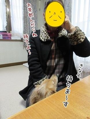 kinako6297.jpg