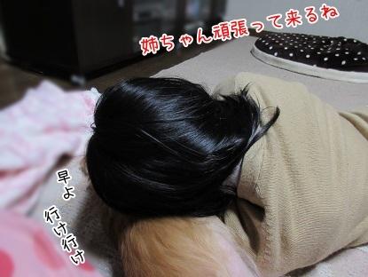 kinako6307.jpg